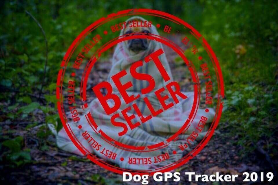 Best Dog GPS Tracker – Top Sellers Trending in 2019