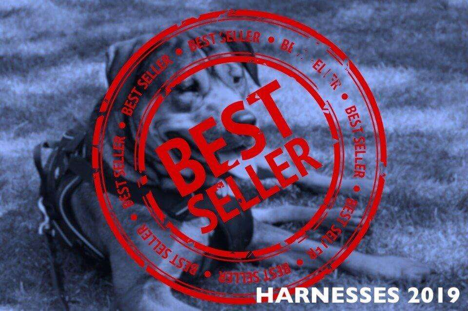 Best Dog Harness - The Top Sellers Trending in 2019