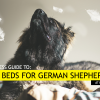 Best Dog Beds for German Shepherds