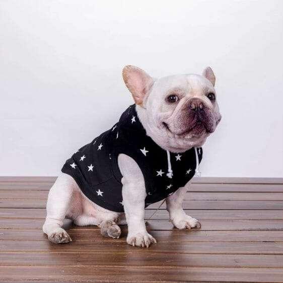 Starstruck Sweater Hoodie