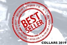 Best Dog Collars – Top Sellers Trending in 2019