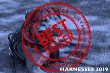 Best Dog Harnesses – Top Sellers Trending in 2019
